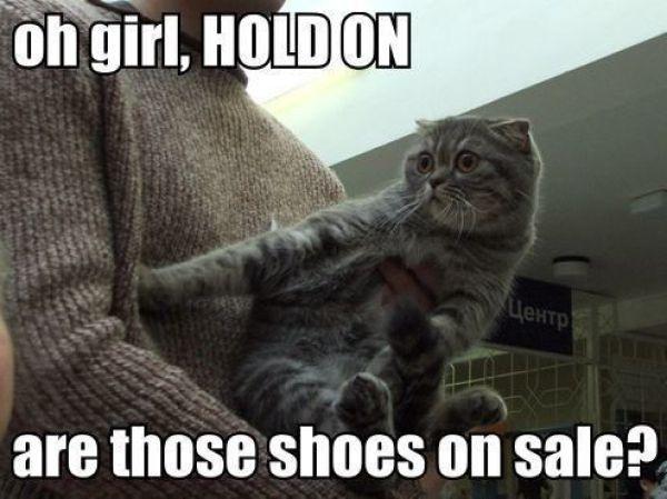 266214ed08e5cfe2f70839a5d7bfec58--shoes-on-sale-shoe-sale