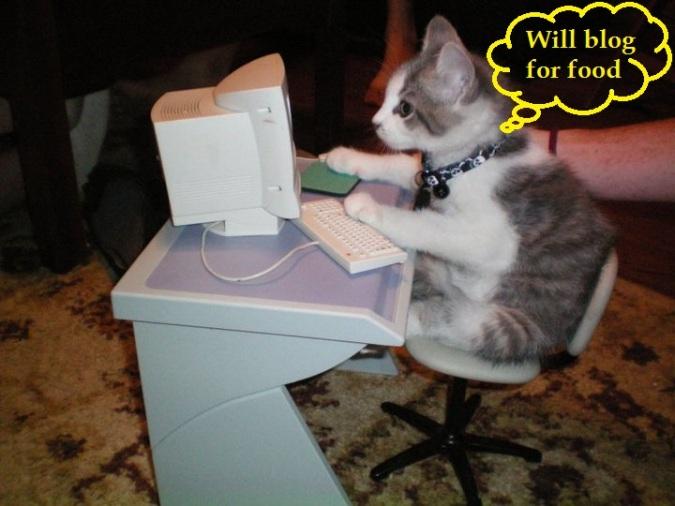 cat-blogger