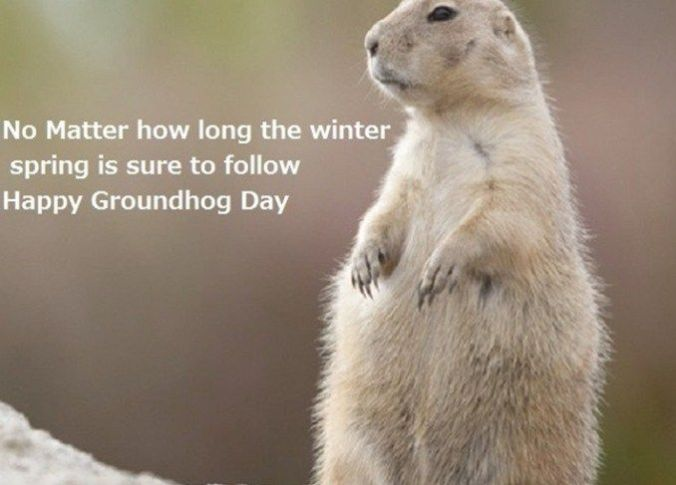 fd1f4c9c06a1c3ab0d39369c22aa8fd3-images-wallpaper-happy-groundhog-day