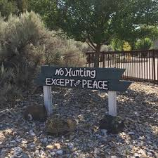 no hunting.jpg