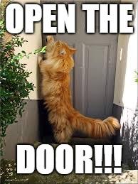 sw open door