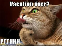 vacation over.jpg