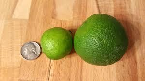 lime comparisons