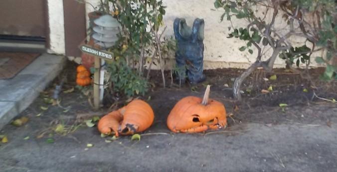 1 - Grumpy Pumpkins.jpg