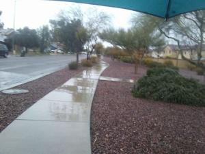 Phoenix rain walk 1
