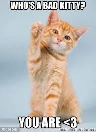 bad kitty.jpg
