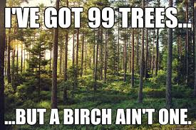 99 trees.jpg