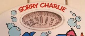 scales sorry charlie
